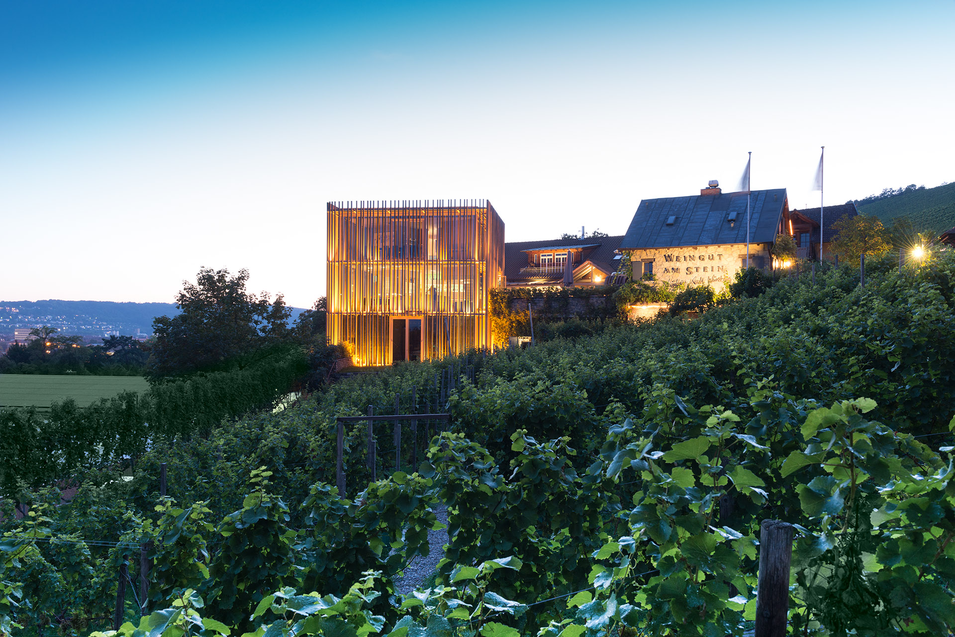 Außenansicht Weingut am Stein in Würzburg mit Blick auf Vinothek und Weinberg. Feigfotodesign